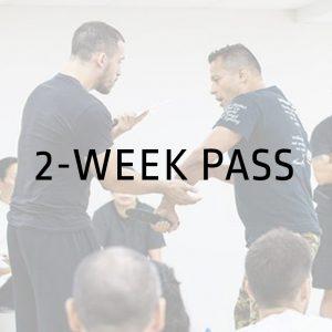 2-Week Pass